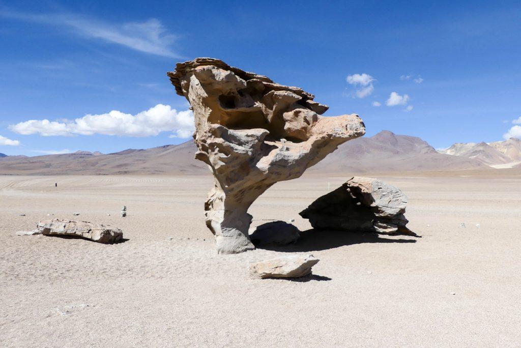 Arbol de Piedra Siloli-Wüste