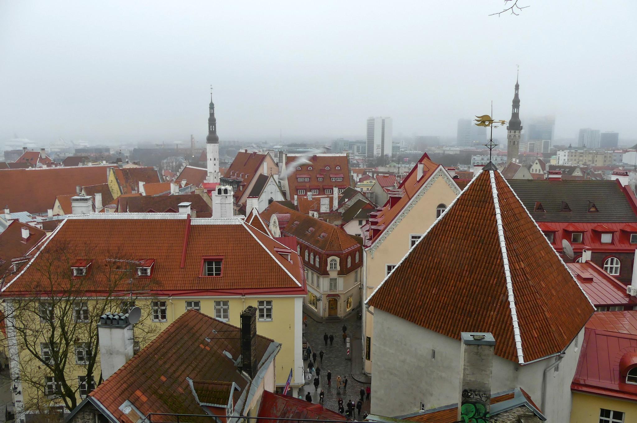 Aussicht über Tallinn