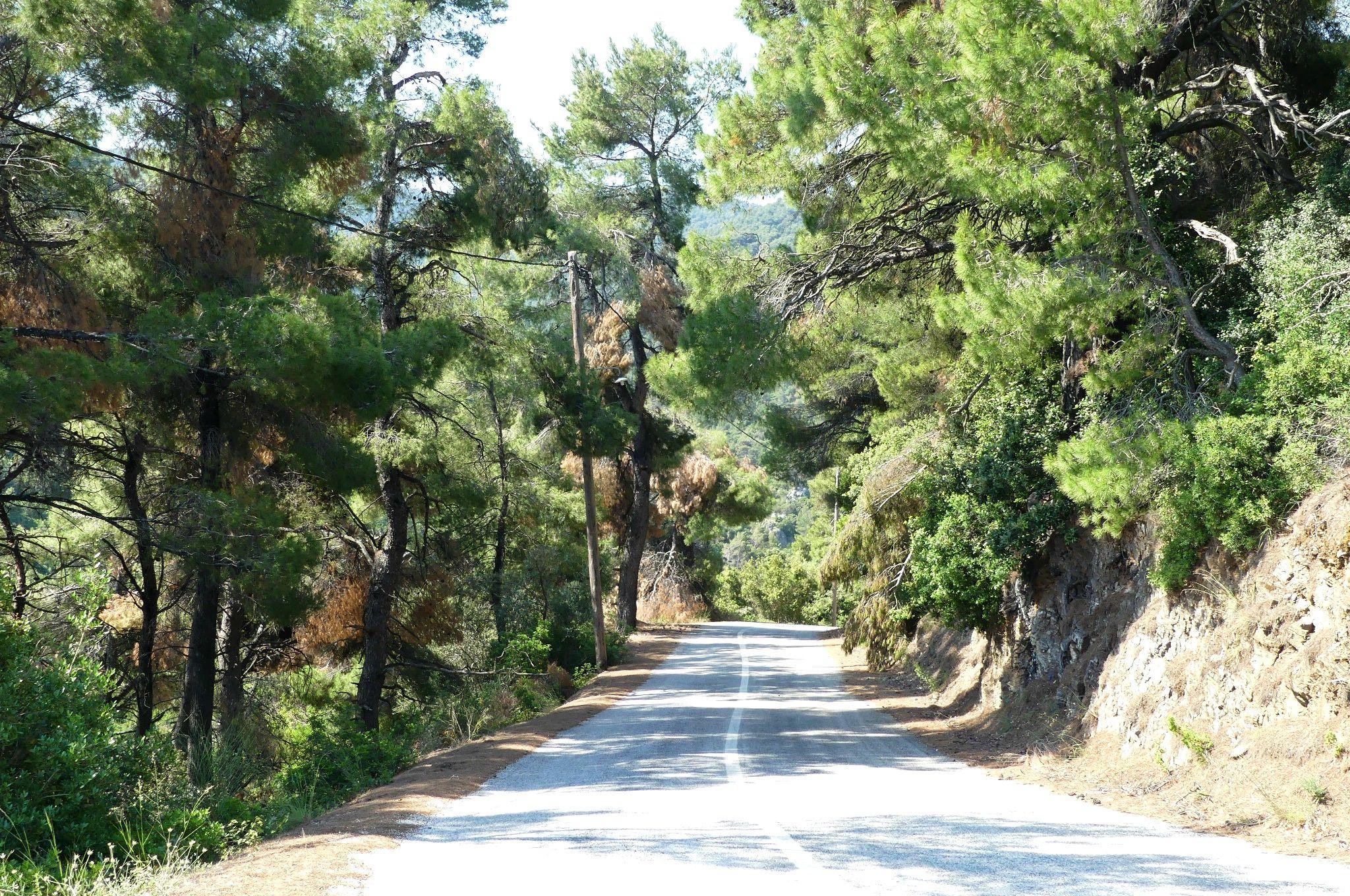 Skopelos Straße