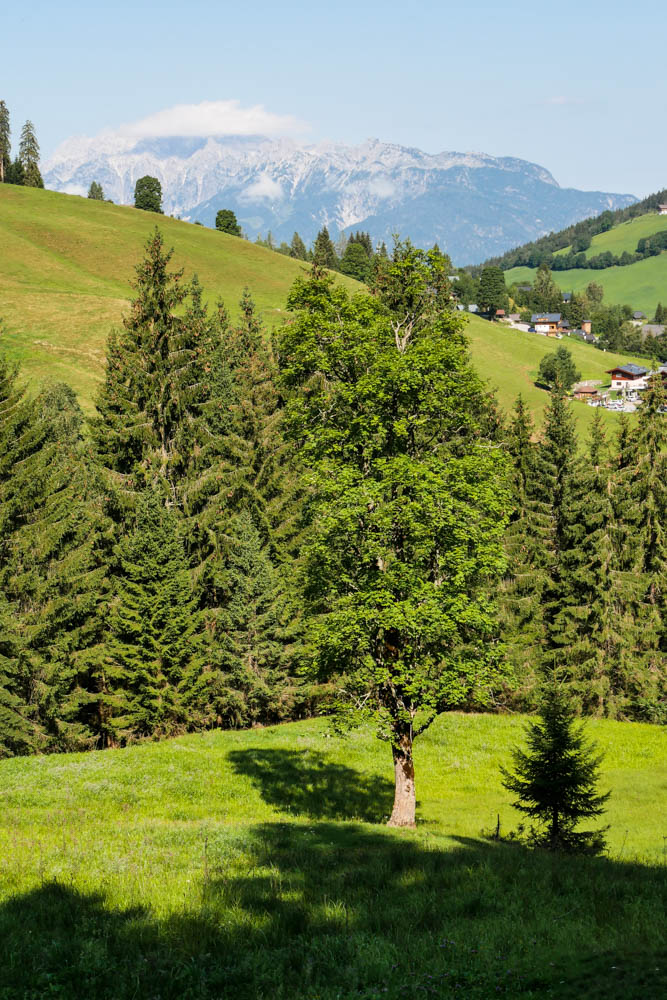 Wanderung zur Jagglhütte in Hintermoos am Hochkönig