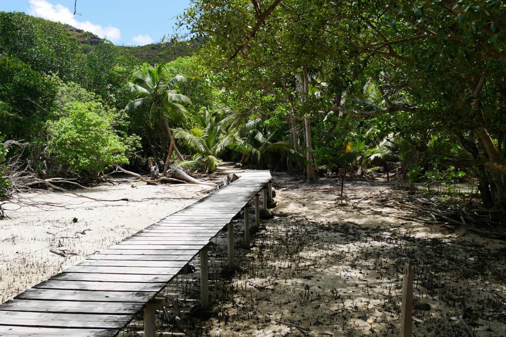 Insel Curieuse Seychellen