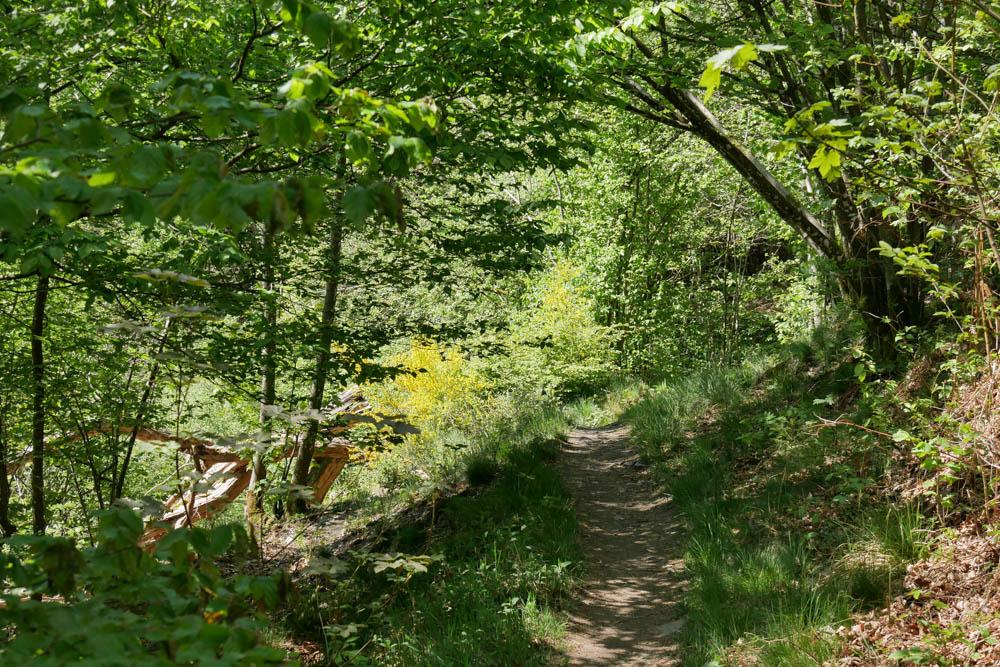 Pfad Monschau Eifelsteig Etappe 2