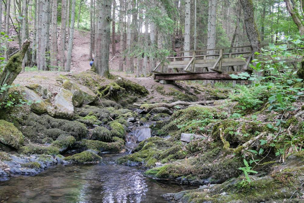 Mündung des Kluckbachs in die Rur