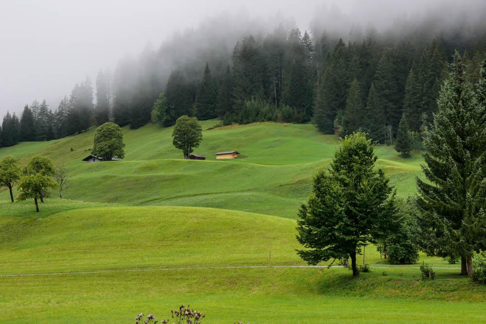 Grüne Bergwiesen am Lechweg