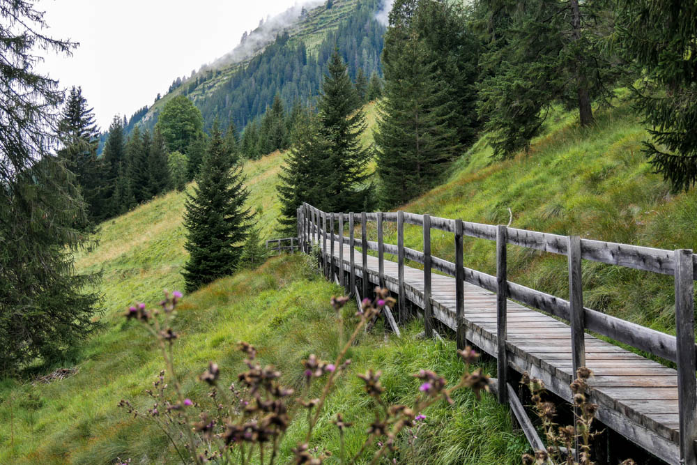 Holzwege Holzgau Lechweg